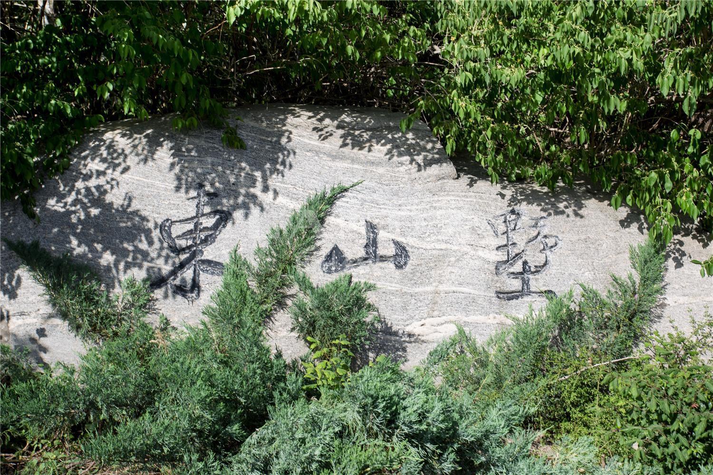 东山墅实景图