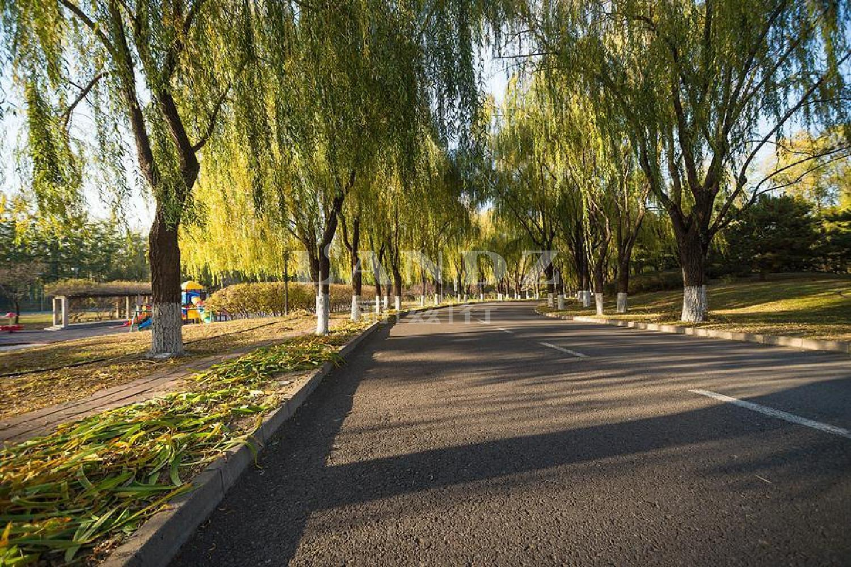 大湖山(shan)莊