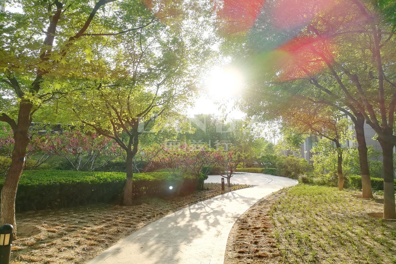 泛海国际碧海园实景图
