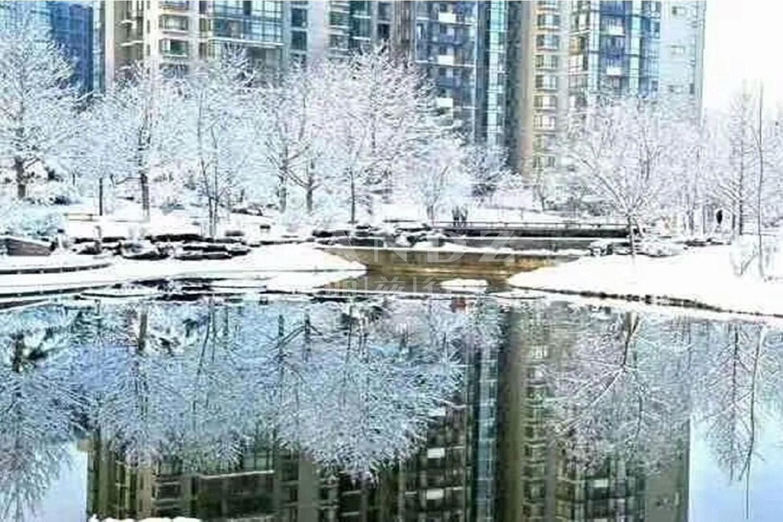 观湖国际实景图